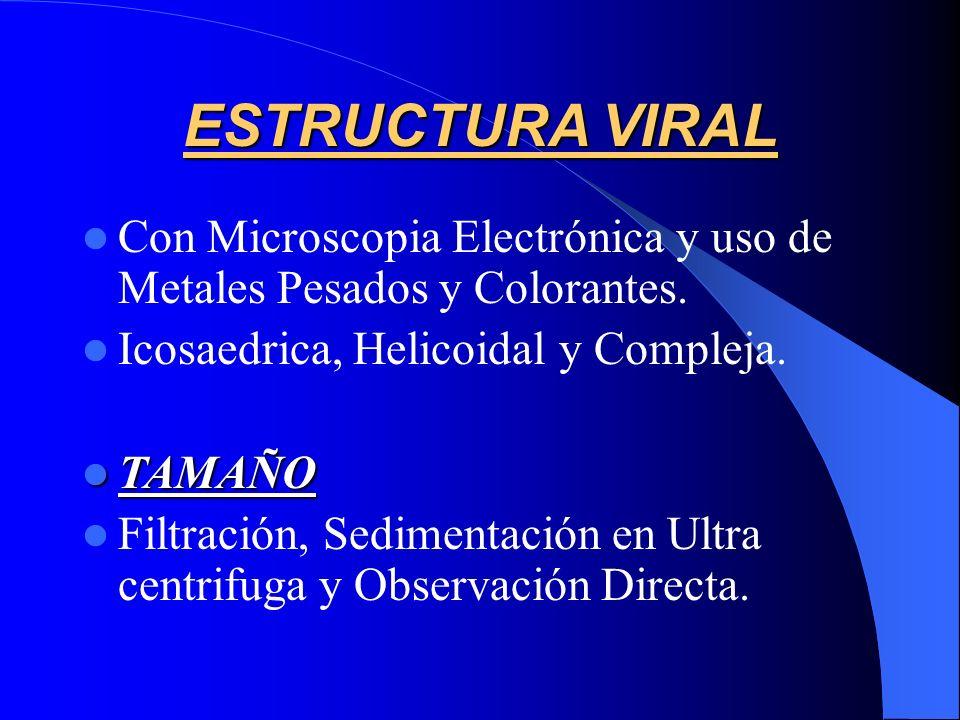 ESTRUCTURA VIRAL Con Microscopia Electrónica y uso de Metales Pesados y Colorantes. Icosaedrica, Helicoidal y Compleja. TAMAÑO TAMAÑO Filtración, Sedi