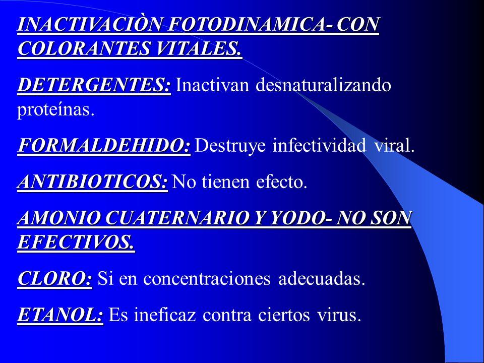 INACTIVACIÒN FOTODINAMICA- CON COLORANTES VITALES. DETERGENTES: DETERGENTES: Inactivan desnaturalizando proteínas. FORMALDEHIDO: FORMALDEHIDO: Destruy