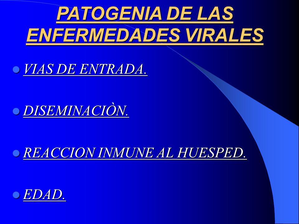 PATOGENIA DE LAS ENFERMEDADES VIRALES VIAS DE ENTRADA. VIAS DE ENTRADA. DISEMINACIÒN. DISEMINACIÒN. REACCION INMUNE AL HUESPED. REACCION INMUNE AL HUE