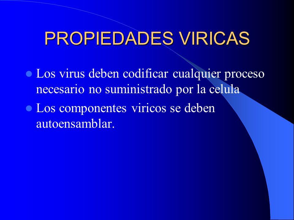PROPIEDADES VIRICAS Los virus deben codificar cualquier proceso necesario no suministrado por la celula Los componentes viricos se deben autoensamblar