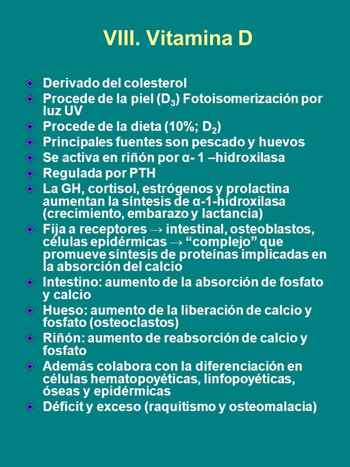 VIII. Vitamina D Derivado del colesterol Procede de la piel (D 3 ) Fotoisomerización por luz UV Procede de la dieta (10%; D 2 ) Principales fuentes so