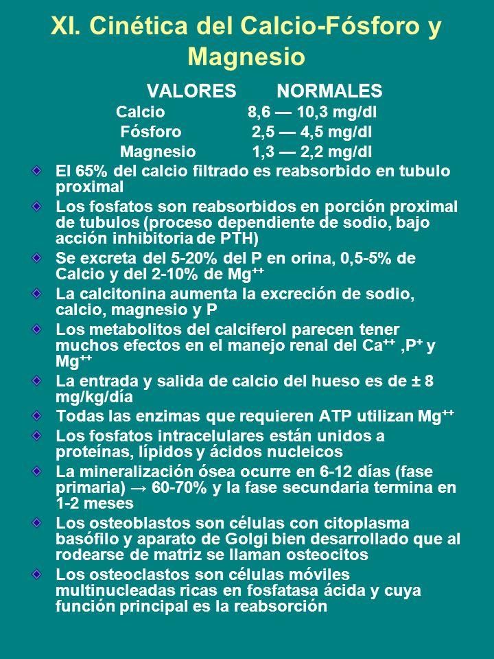XI. Cinética del Calcio-Fósforo y Magnesio VALORES NORMALES Calcio8,6 10,3 mg/dl Fósforo2,5 4,5 mg/dl Magnesio1,3 2,2 mg/dl El 65% del calcio filtrado