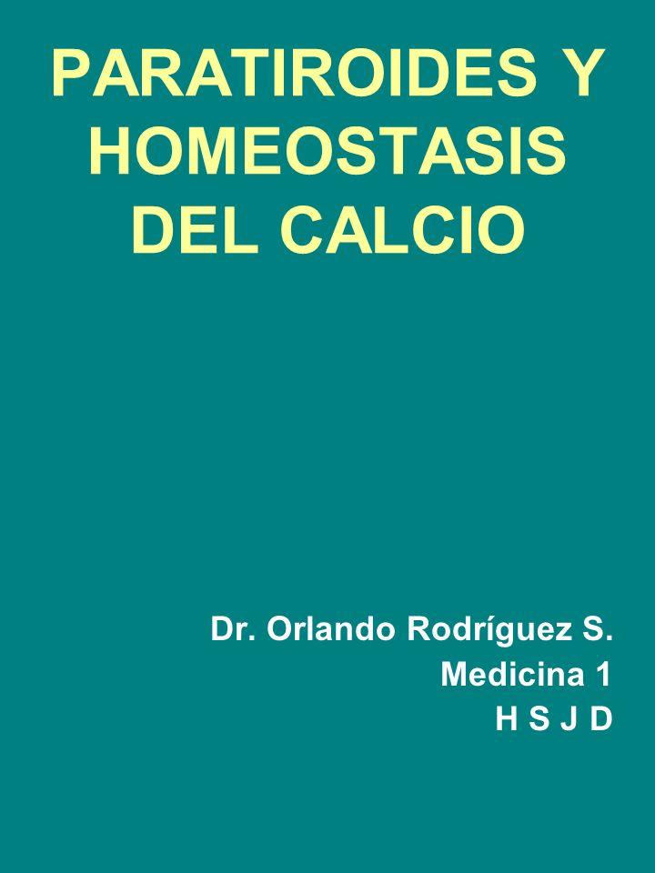 PARATIROIDES Y HOMEOSTASIS DEL CALCIO Dr. Orlando Rodríguez S. Medicina 1 H S J D