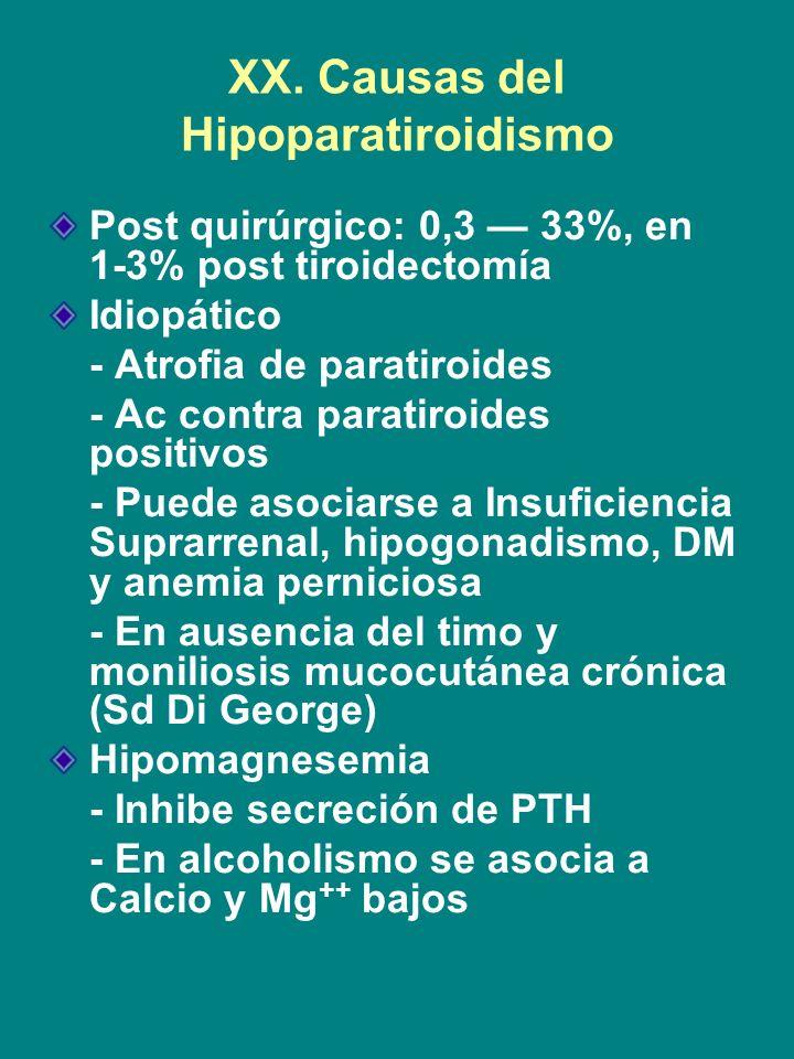 XX. Causas del Hipoparatiroidismo Post quirúrgico: 0,3 33%, en 1-3% post tiroidectomía Idiopático - Atrofia de paratiroides - Ac contra paratiroides p