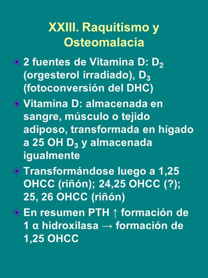 XXIII. Raquitismo y Osteomalacia 2 fuentes de Vitamina D: D 2 (orgesterol irradiado), D 3 (fotoconversión del DHC) Vitamina D: almacenada en sangre, m