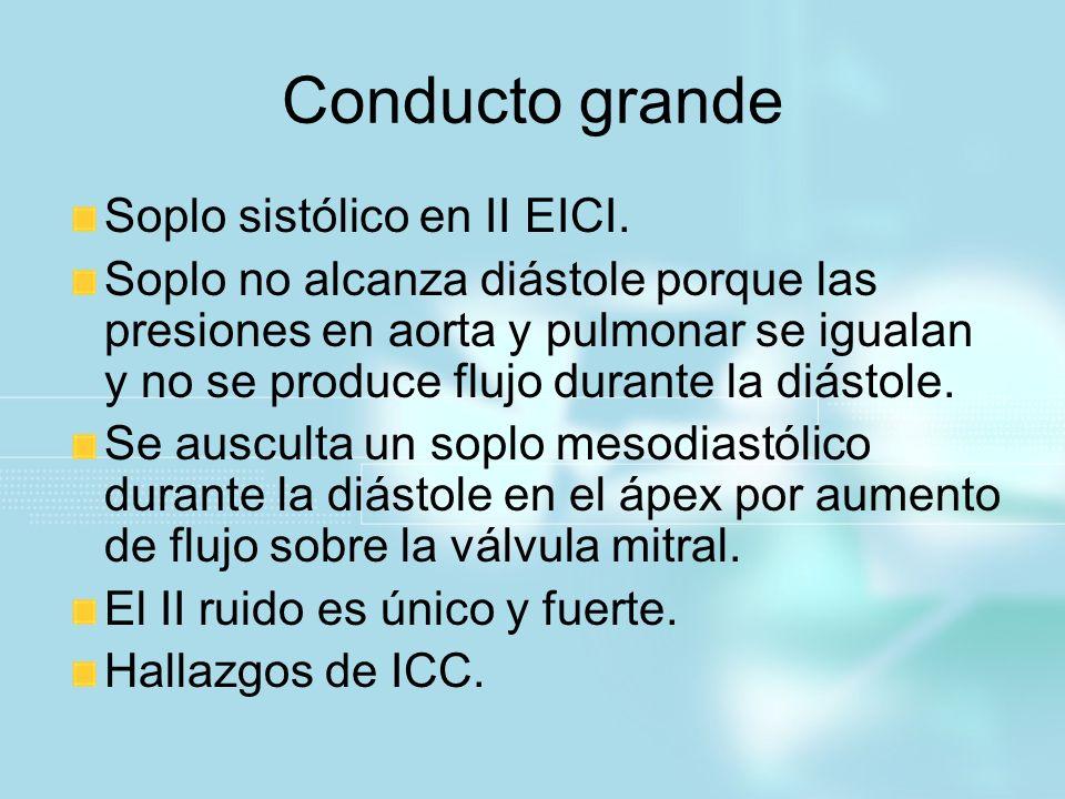 Conducto grande Soplo sistólico en II EICI. Soplo no alcanza diástole porque las presiones en aorta y pulmonar se igualan y no se produce flujo durant
