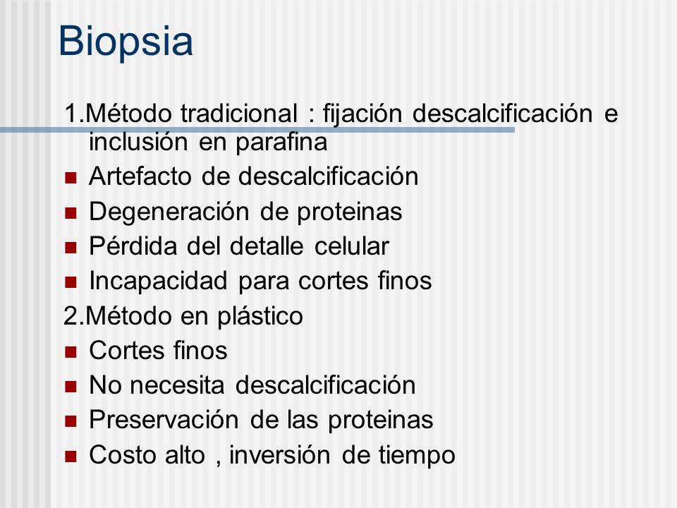 Biopsia 1.Método tradicional : fijación descalcificación e inclusión en parafina Artefacto de descalcificación Degeneración de proteinas Pérdida del d