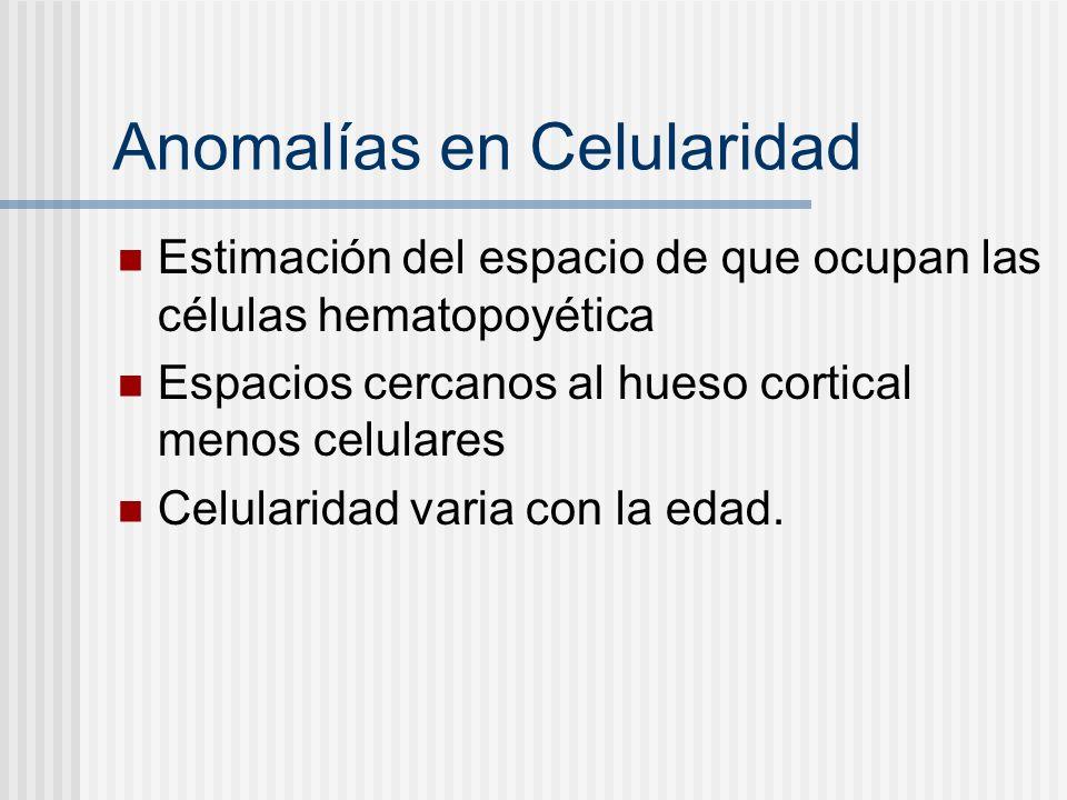 Anomalías en Celularidad Estimación del espacio de que ocupan las células hematopoyética Espacios cercanos al hueso cortical menos celulares Celularid