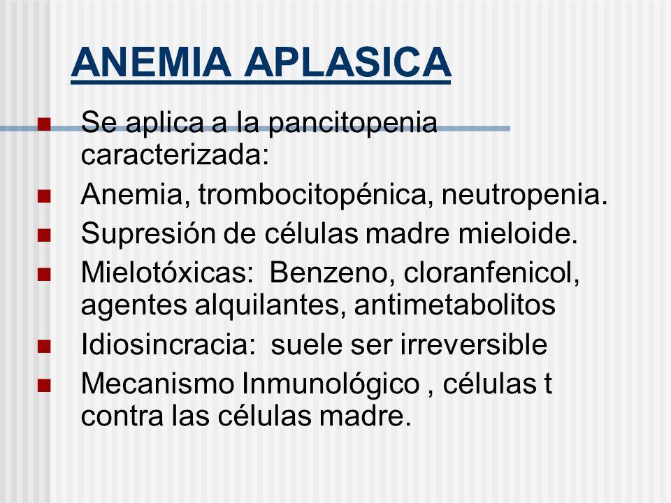 ANEMIA APLASICA Se aplica a la pancitopenia caracterizada: Anemia, trombocitopénica, neutropenia. Supresión de células madre mieloide. Mielotóxicas: B