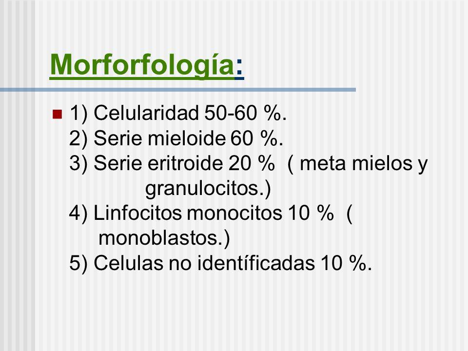 Morforfología: 1) Celularidad 50-60 %. 2) Serie mieloide 60 %. 3) Serie eritroide 20 % ( meta mielos y granulocitos.) 4) Linfocitos monocitos 10 % ( m