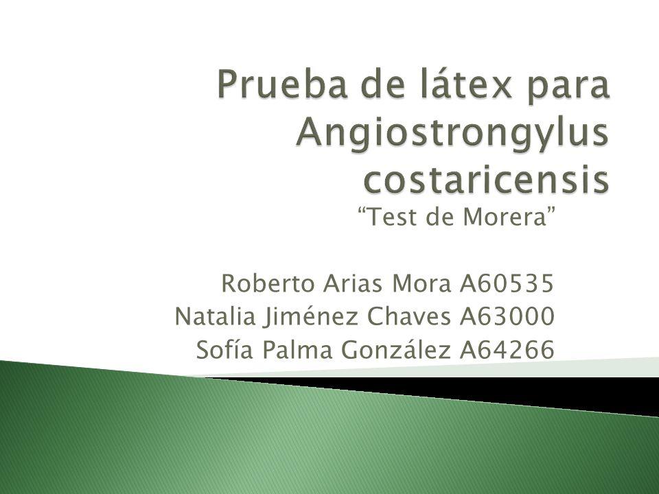 Test de Morera Roberto Arias Mora A60535 Natalia Jiménez Chaves A63000 Sofía Palma González A64266