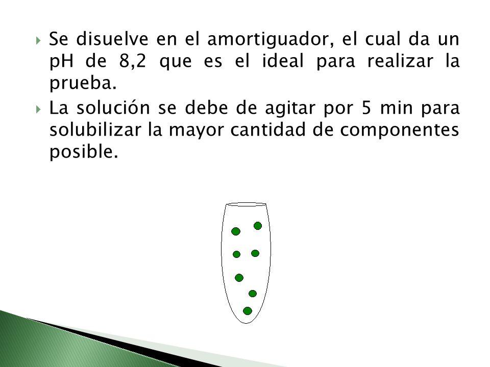Se disuelve en el amortiguador, el cual da un pH de 8,2 que es el ideal para realizar la prueba. La solución se debe de agitar por 5 min para solubili