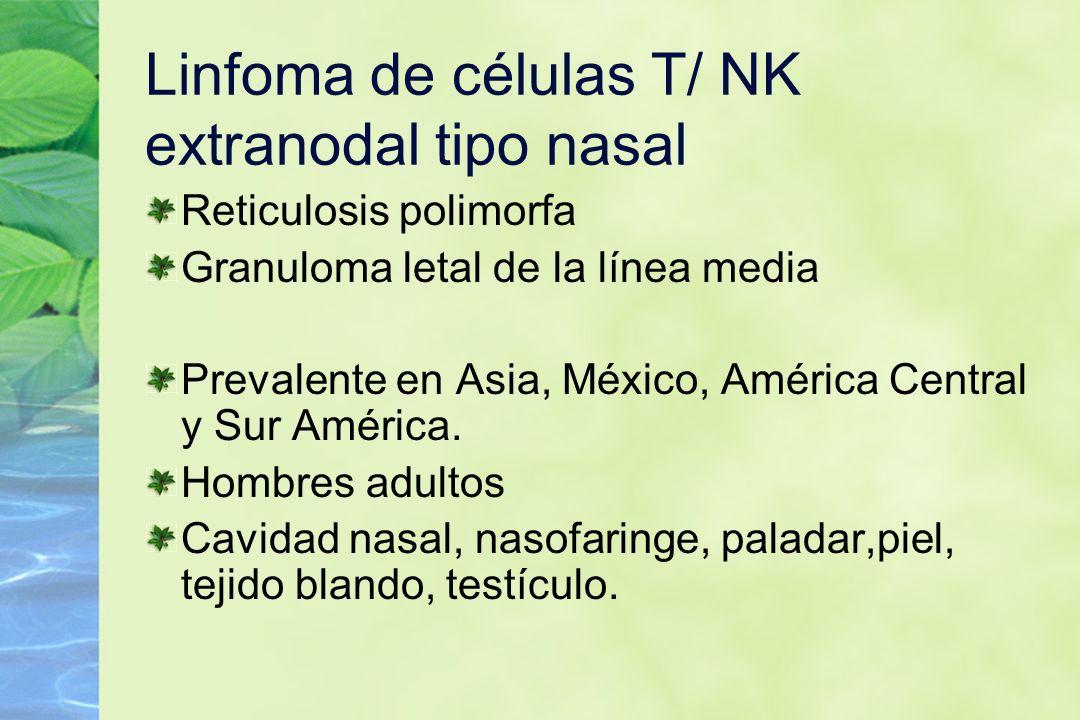 Linfoma de células T/ NK extranodal tipo nasal Reticulosis polimorfa Granuloma letal de la línea media Prevalente en Asia, México, América Central y S