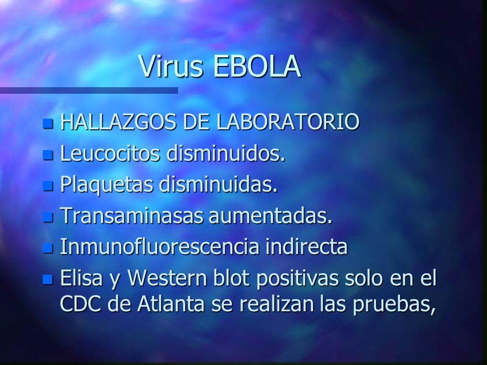 Virus EBOLA n HALLAZGOS DE LABORATORIO n Leucocitos disminuidos. n Plaquetas disminuidas. n Transaminasas aumentadas. n Inmunofluorescencia indirecta