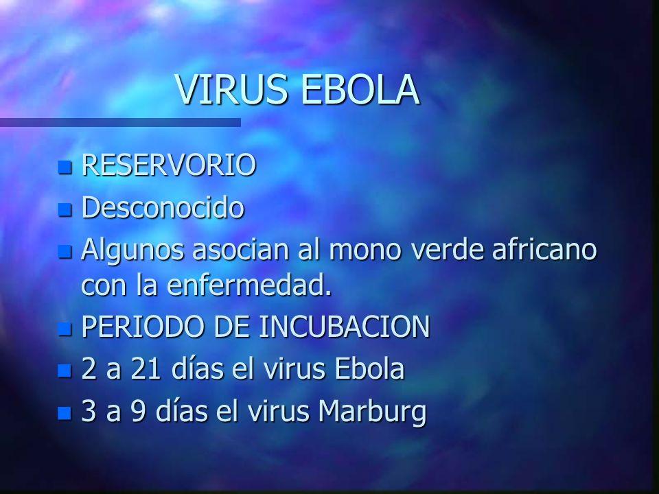 VIRUS EBOLA n RESERVORIO n Desconocido n Algunos asocian al mono verde africano con la enfermedad. n PERIODO DE INCUBACION n 2 a 21 días el virus Ebol