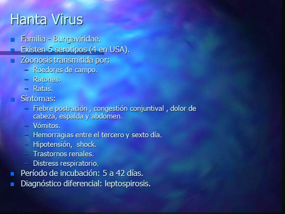 Hanta Virus n Familia - Bungaviridae. n Existen 5 serotipos (4 en USA). n Zoonosis transmitida por: –Roedores de campo. –Ratones. –Ratas. n Síntomas: