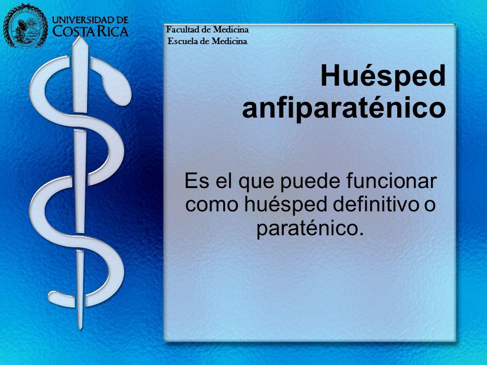 Huésped anfiparaténico Es el que puede funcionar como huésped definitivo o paraténico. Facultad de Medicina Escuela de Medicina