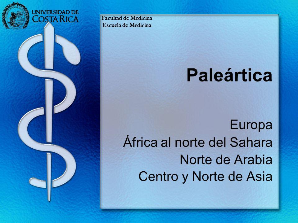 Paleártica Europa África al norte del Sahara Norte de Arabia Centro y Norte de Asia Facultad de Medicina Escuela de Medicina