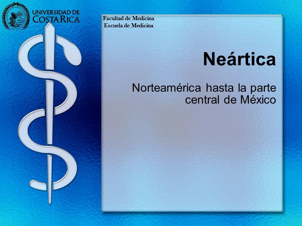Neártica Norteamérica hasta la parte central de México Facultad de Medicina Escuela de Medicina