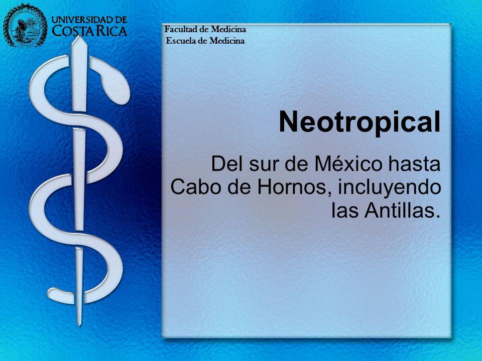 Neotropical Del sur de México hasta Cabo de Hornos, incluyendo las Antillas. Facultad de Medicina Escuela de Medicina