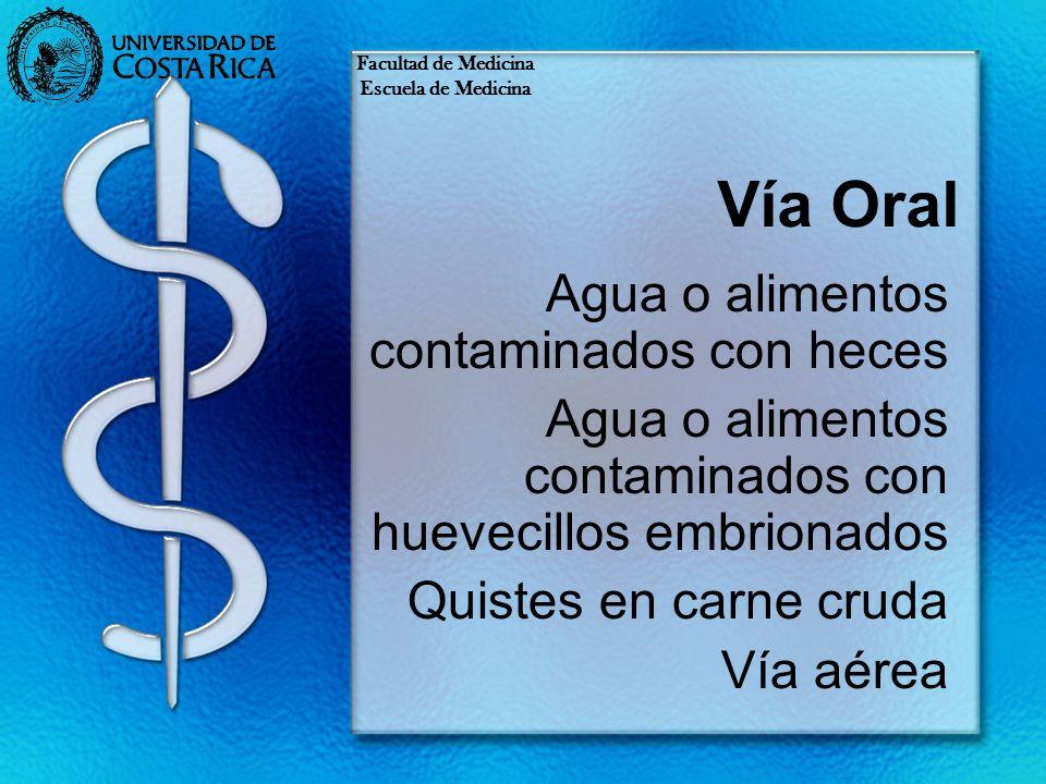 Vía Oral Agua o alimentos contaminados con heces Agua o alimentos contaminados con huevecillos embrionados Quistes en carne cruda Vía aérea Facultad d