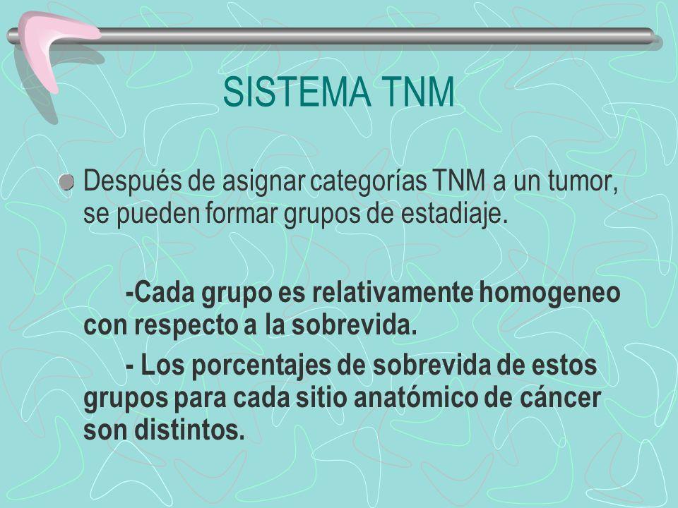 Después de asignar categorías TNM a un tumor, se pueden formar grupos de estadiaje. -Cada grupo es relativamente homogeneo con respecto a la sobrevida
