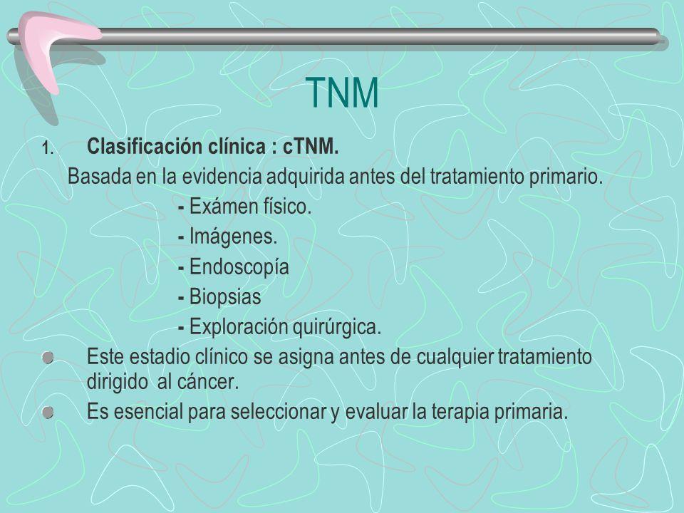 1. Clasificación clínica : cTNM. Basada en la evidencia adquirida antes del tratamiento primario. - Exámen físico. - Imágenes. - Endoscopía - Biopsias