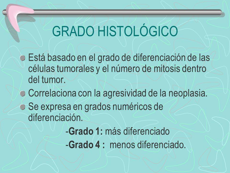GRADO HISTOLÓGICO Está basado en el grado de diferenciación de las células tumorales y el número de mitosis dentro del tumor. Correlaciona con la agre