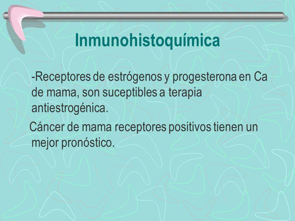 -Receptores de estrógenos y progesterona en Ca de mama, son suceptibles a terapia antiestrogénica. Cáncer de mama receptores positivos tienen un mejor