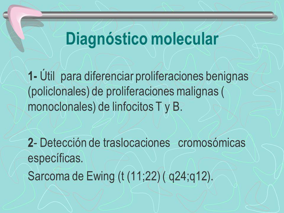 1- Útil para diferenciar proliferaciones benignas (policlonales) de proliferaciones malignas ( monoclonales) de linfocitos T y B. 2 - Detección de tra