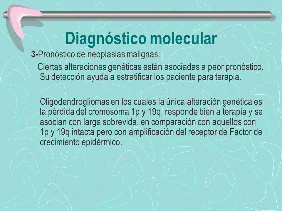 3- Pronóstico de neoplasias malignas: Ciertas alteraciones genéticas están asociadas a peor pronóstico. Su detección ayuda a estratificar los paciente
