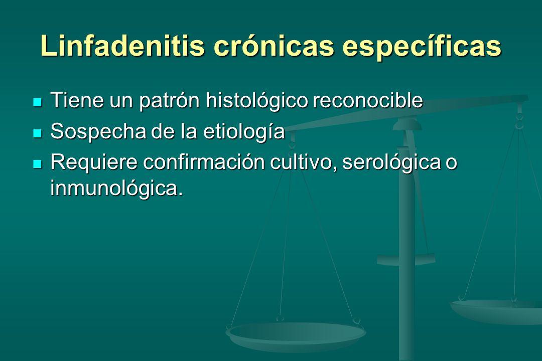 Linfadenitis crónicas específicas Tiene un patrón histológico reconocible Tiene un patrón histológico reconocible Sospecha de la etiología Sospecha de