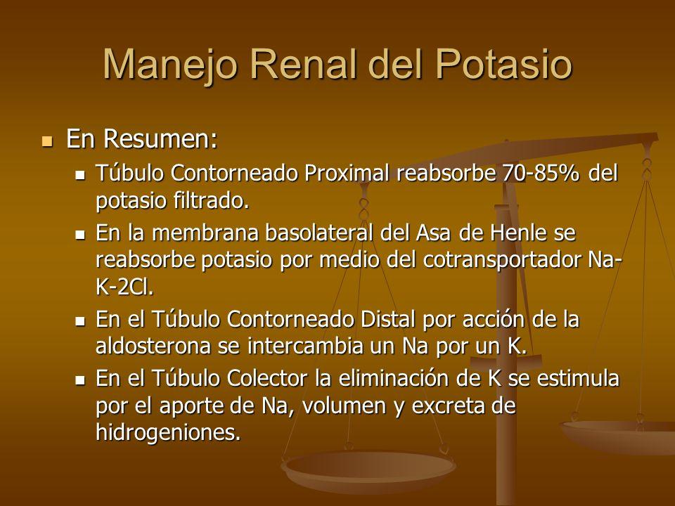 Manejo Renal del Potasio En Resumen: En Resumen: Túbulo Contorneado Proximal reabsorbe 70-85% del potasio filtrado. Túbulo Contorneado Proximal reabso