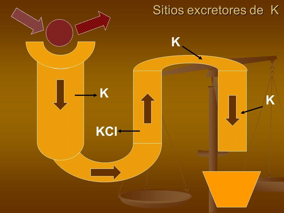 K Sitios excretores de K KCl K K