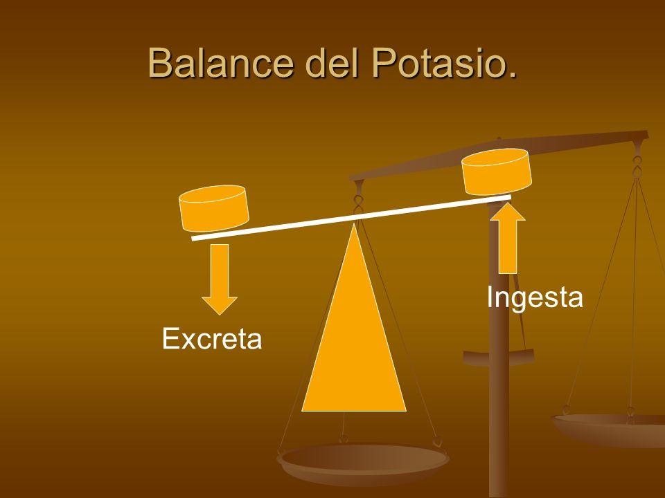 Líquido Intracelular Líquido Extracelular 2% 98% Ingesta 70-120meq/l Excreta 70-120meq/l Balance Externo.