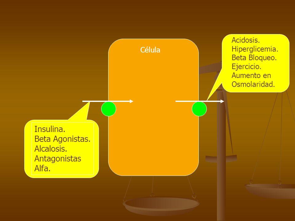 Célula Insulina. Beta Agonistas. Alcalosis. Antagonistas Alfa. Acidosis. Hiperglicemia. Beta Bloqueo. Ejercicio. Aumento en Osmolaridad.