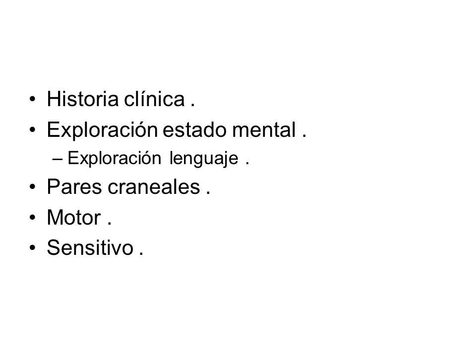 Historia clínica Dónde está la lesión .Pensar neuroanatómicamente.