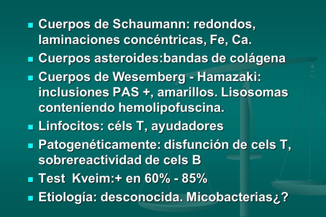Cuerpos de Schaumann: redondos, laminaciones concéntricas, Fe, Ca. Cuerpos de Schaumann: redondos, laminaciones concéntricas, Fe, Ca. Cuerpos asteroid