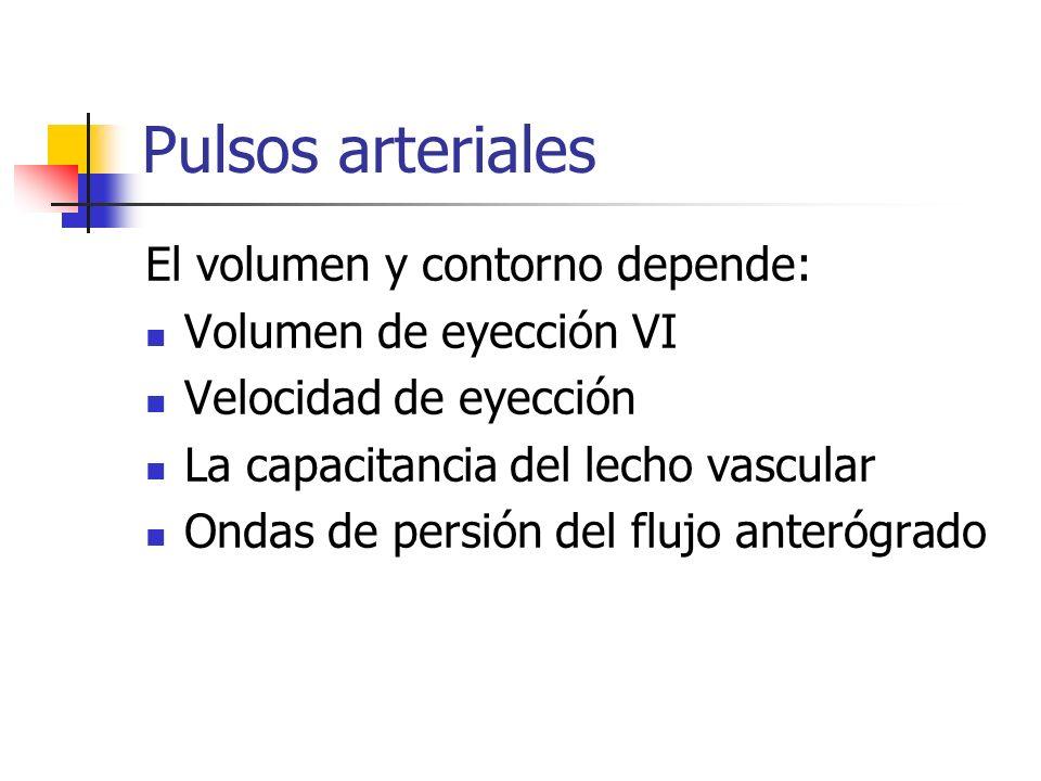 Pulso carotídeo Representa el pulso central aórtico Se aplica el pulgar derecho en la arteria carótida izquierda en el tercio distal del cuello Nunca se hace bilateral y al mismo tiempo