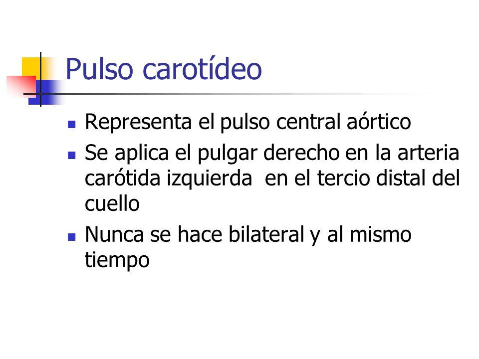 Pulso carotídeo Representa el pulso central aórtico Se aplica el pulgar derecho en la arteria carótida izquierda en el tercio distal del cuello Nunca