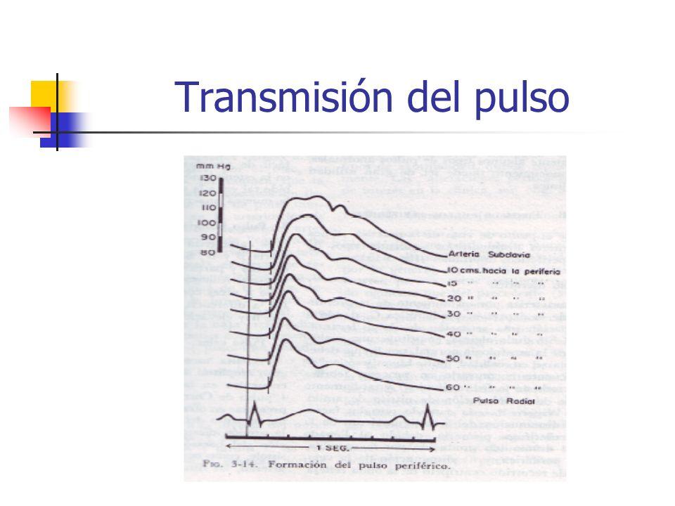 Transmisión del pulso