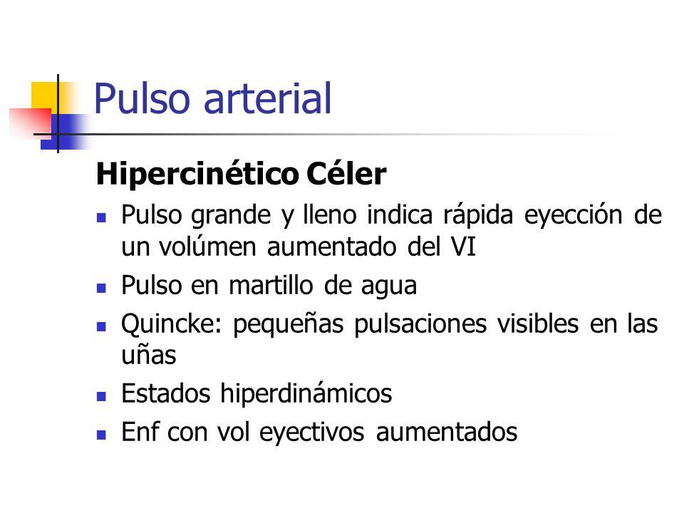 Pulso arterial Hipercinético Céler Pulso grande y lleno indica rápida eyección de un volúmen aumentado del VI Pulso en martillo de agua Quincke: peque