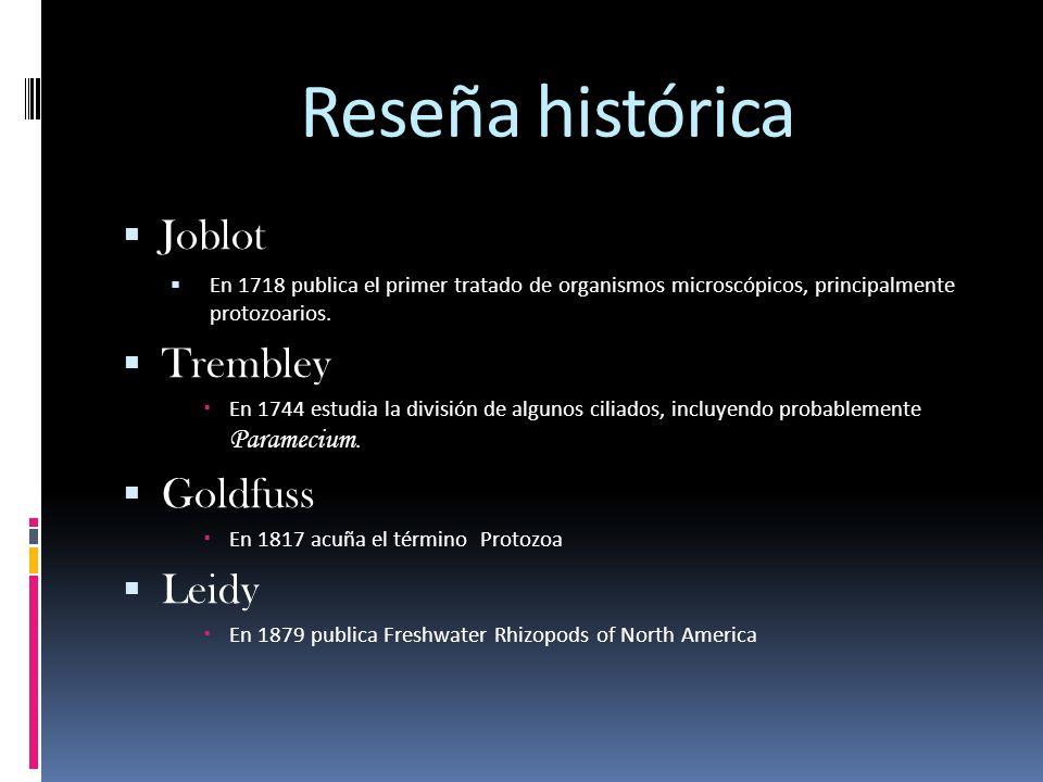 Reseña histórica Joblot En 1718 publica el primer tratado de organismos microscópicos, principalmente protozoarios. Trembley En 1744 estudia la divisi