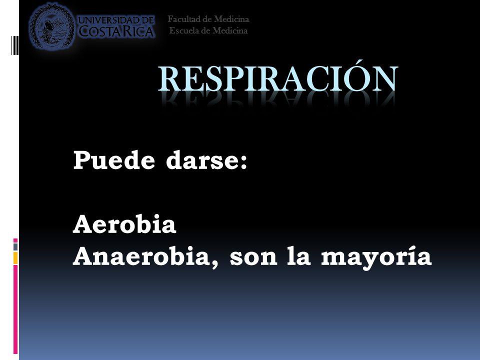 Puede darse: Aerobia Anaerobia, son la mayoría Facultad de Medicina Escuela de Medicina