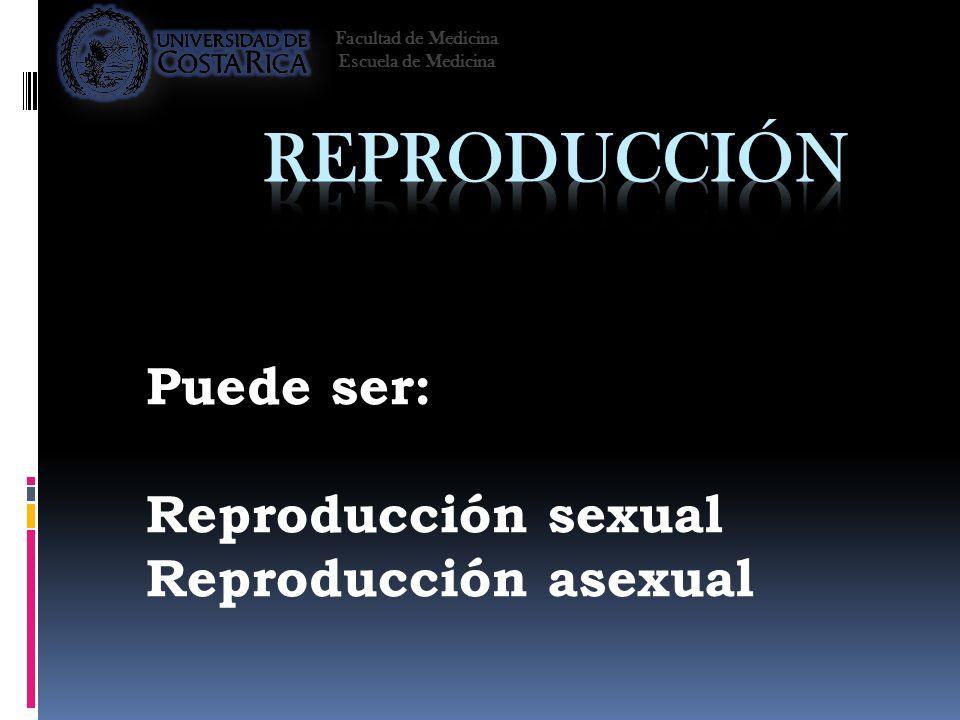 Puede ser: Reproducción sexual Reproducción asexual Facultad de Medicina Escuela de Medicina