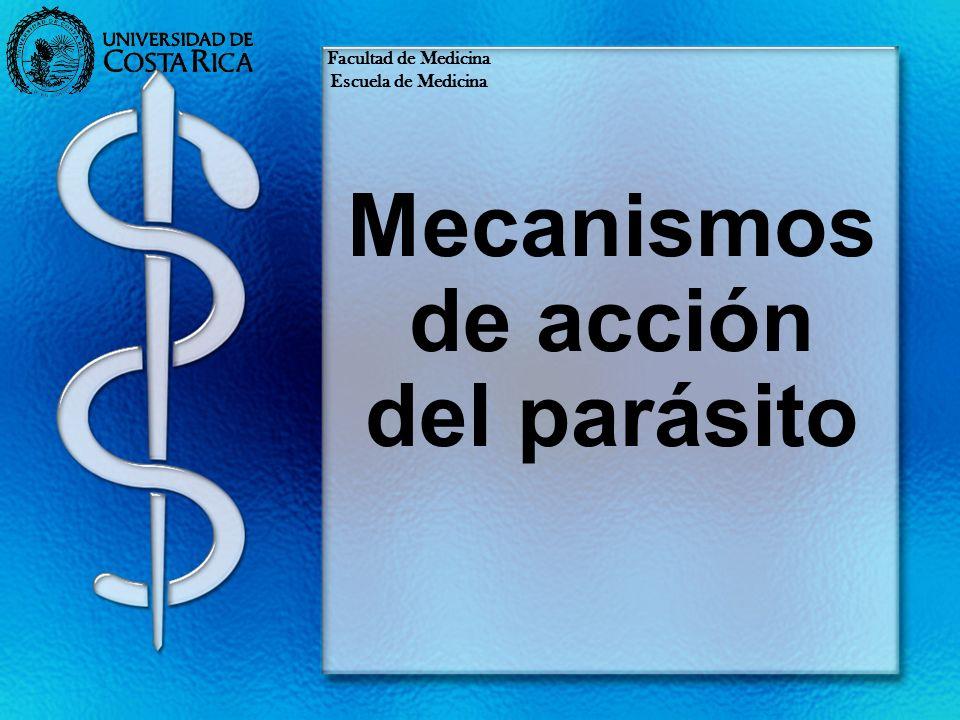 Mecanismos de acción del parásito Facultad de Medicina Escuela de Medicina