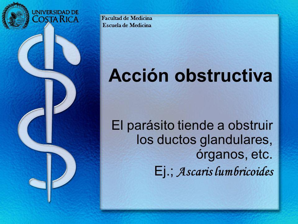 Acción obstructiva El parásito tiende a obstruir los ductos glandulares, órganos, etc. Ej.; Ascaris lumbricoides Facultad de Medicina Escuela de Medic