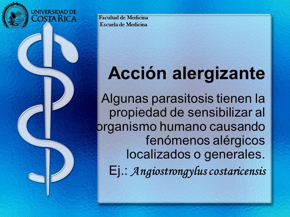 Acción alergizante Algunas parasitosis tienen la propiedad de sensibilizar al organismo humano causando fenómenos alérgicos localizados o generales. E