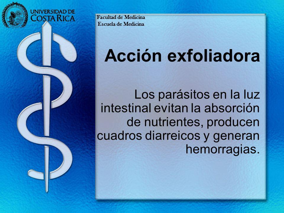 Acción exfoliadora Los parásitos en la luz intestinal evitan la absorción de nutrientes, producen cuadros diarreicos y generan hemorragias. Facultad d