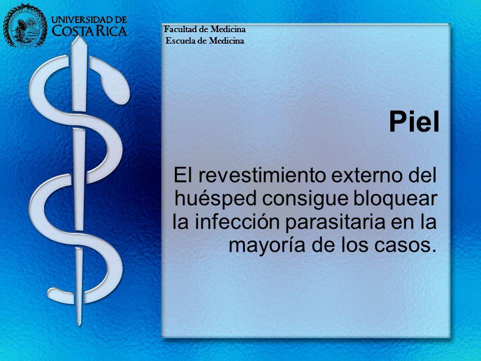 Piel El revestimiento externo del huésped consigue bloquear la infección parasitaria en la mayoría de los casos. Facultad de Medicina Escuela de Medic
